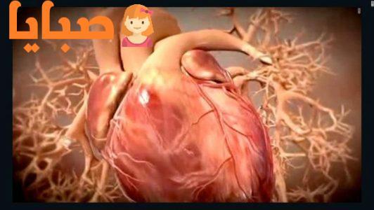 الكوليسترول المسبب الأول لمرض القلب